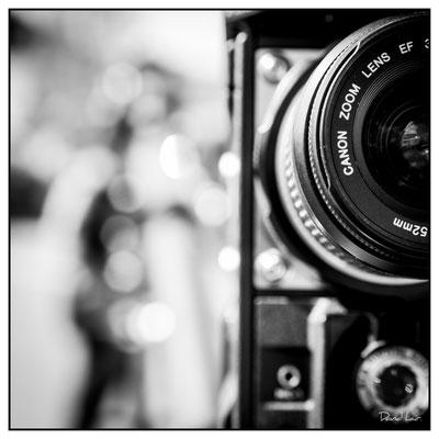 La RED. Par David Lair Photographe à Ancenis.