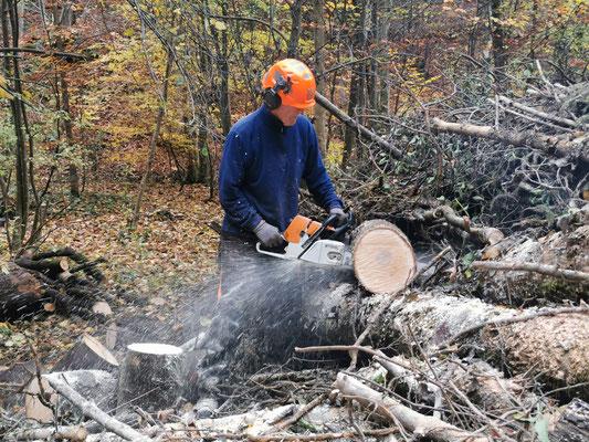 Hier der Produzent der Holzblöcke, Kari never end am Sägele.