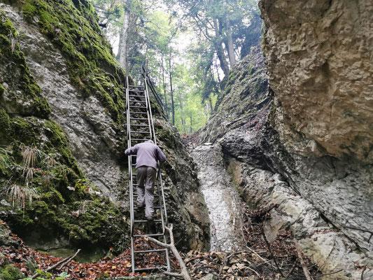 """Bei der """"Isige Leitere"""" wurde Holz aus dem Bachbett und von verschiedenen Orten zusammengetragen und verfeuert."""