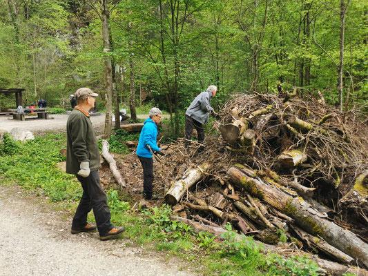 Begutachten und zusammentragen des Brennholzes beim Kiosk
