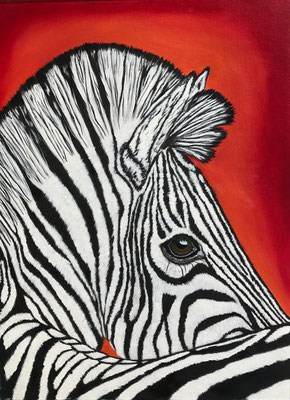 Zebra / Canvas Sheet 36x48cm