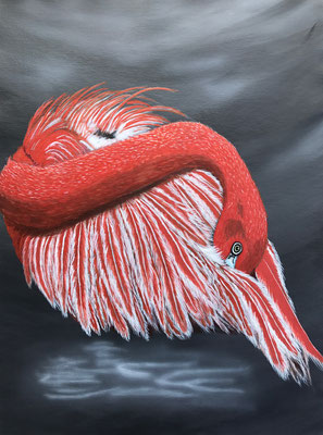 Flamingo / Canvas Sheet 36x48cm