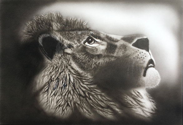 Lion / Airbrush Paper 35x50cm