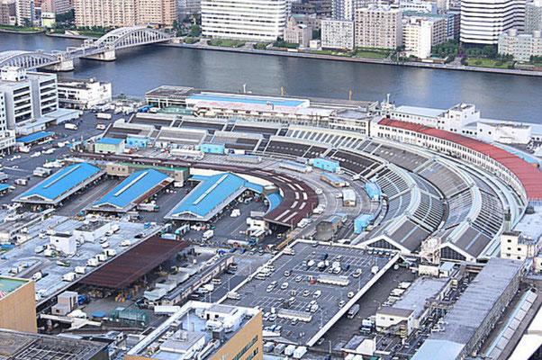 Bird's-eye View of Vast Tsukiji Innner Market