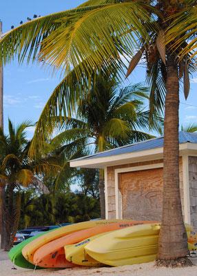 Higgs Beach Kayaks, Key West: November 2013