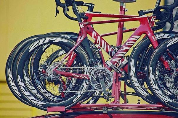 Bikes Team Katusha Alpecin
