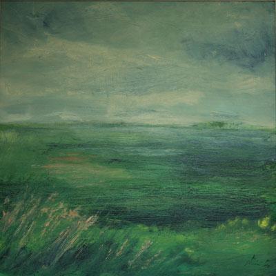 voorjaar in de polder 60x60  acryl op plaat met lijst €200