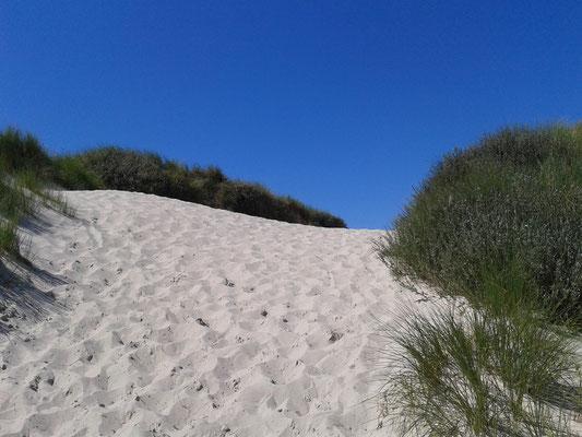 Hier geht´s zu unserem Strand