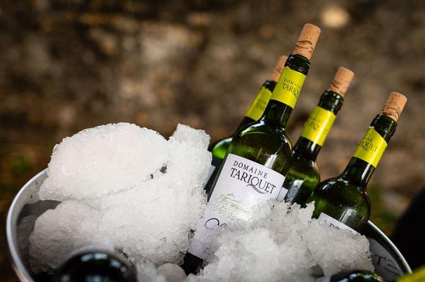 Vin Tariquet