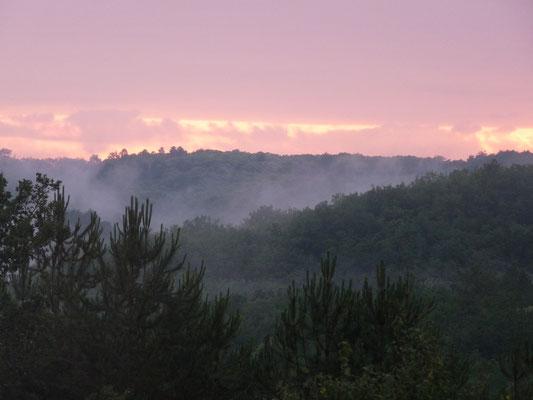Au cœur de la forêt périgourdine, une ancienne ferme pour des vacances en famille