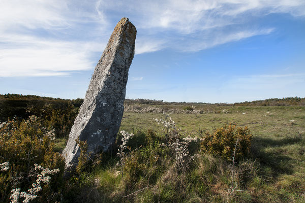 en-bordure-D-39-se-dresse-un-menhir-commune-veyreau-causse-noir-hebergement-en-gite-d(-exception-en-aveyron-le-colombier-saint-veran-credit-photo-mcg
