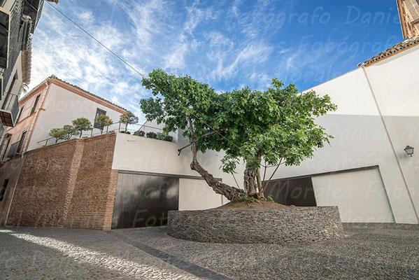 La Higuera - Calle Postigo San Agustín - Encargo Administraciones Rivas Padilla