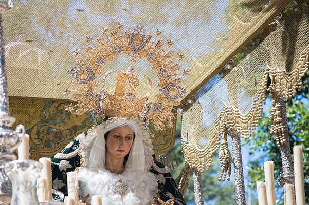 María Santísima del Amparo Málaga - Cofradía de la Pollinica