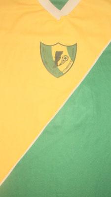 Academia Integral de Fútbol Ernesto Duchini - Villa Constitucion - Santa Fe.