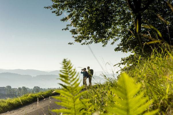 Wandern am Qualitätsweg Goldsteig, Tourismusverband Ostbayern e.V., Foto: Andreas Hub