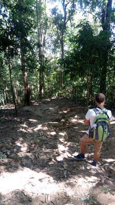 La descente pour rejoindre le Wat Pha Lat depuis le Doi Suthep