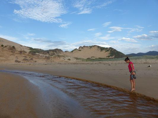 La rivière qui se jette lentement dans la mer