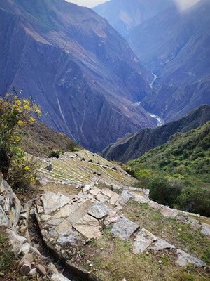 Les terrasses aux lamas vues d'en haut. la photo n'est pas exagérée, c'est vraiment pentu à ce point. Egalement on voit les canalisations qui servent à apporter l'eau, tout est prévu !