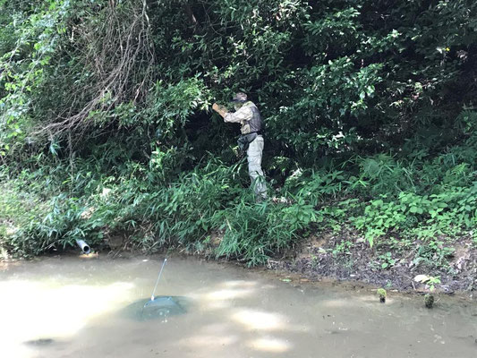第2キャンプ場にザリガニ捕獲網投入