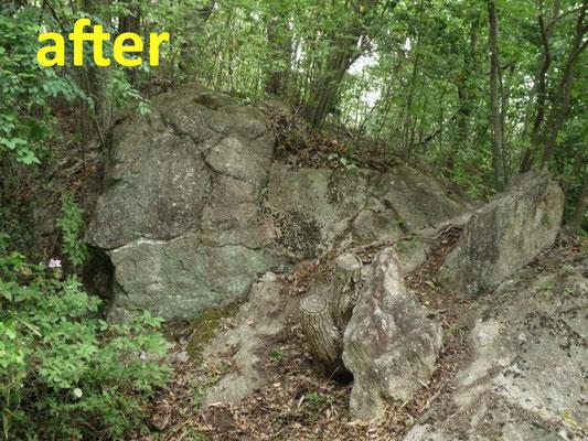 ダックスフント岩周辺のササ刈(作業後)