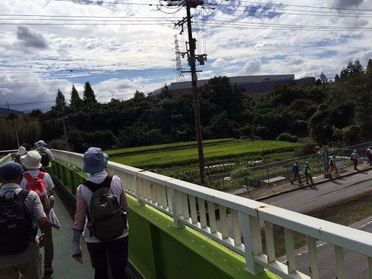 阪奈道路渡りまーす