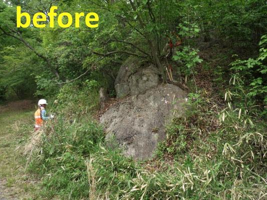 ダックスフント岩周辺のササ刈(作業前)