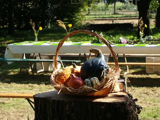 Déjeuner champêtre au Haras du Casse