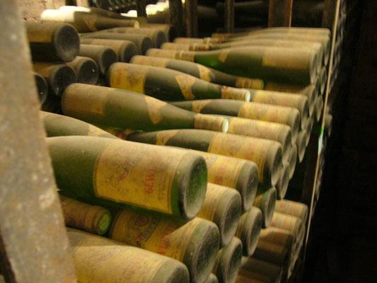 カーヴで熟成中のワインたち