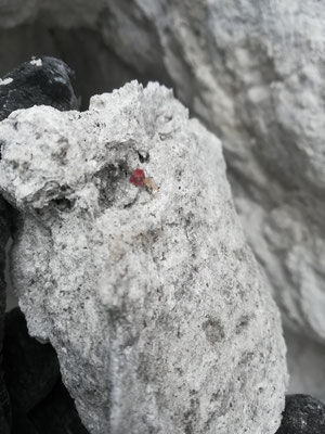 roter Beryll mit Topas BB ca. 4 cm