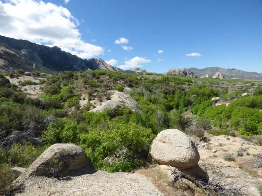 Blick vom Fundgebiet in die Umgebung