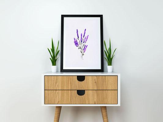 Aquarell – Lavendel