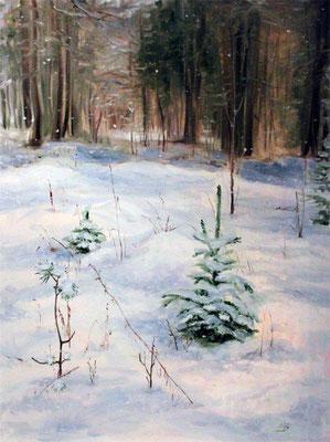 "Морозова М. ""Первый снег в лесу"" х,м 2009г."
