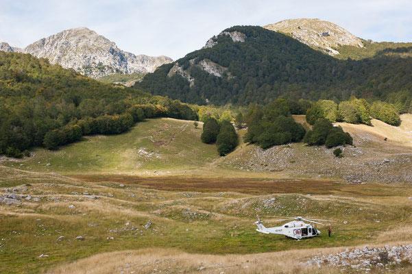 Parco naz. Abruzzo, Lazio e Molise