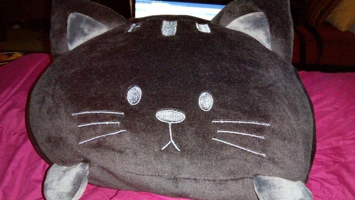 Bonus: Meine Emotional Support Katze, neu aus Maastricht