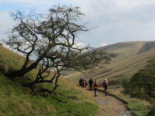 The Pennine Way path