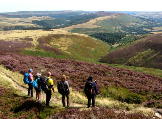 Enjoying the view. Kinder Scout guided walk