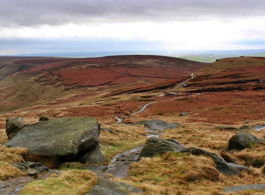 View of Brown Knoll on guided walk