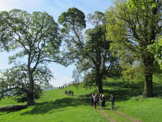 Walking up the hillside from Rowsley
