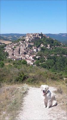 Prendre de la hauteur et contempler le village de Cordes sur Ciel / Au mas de Janita ©