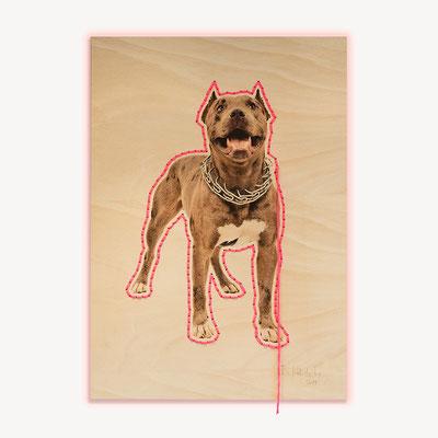 Barbara Reck-Irmler · Dog Nr. 1 · 2019 · c-print on plywood, textile yarn · 840 x 1188 mm