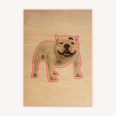 Barbara Reck-Irmler · Dog Nr. 3 · 2019 · c-print on plywood, textile yarn · 840 x 1188 mm