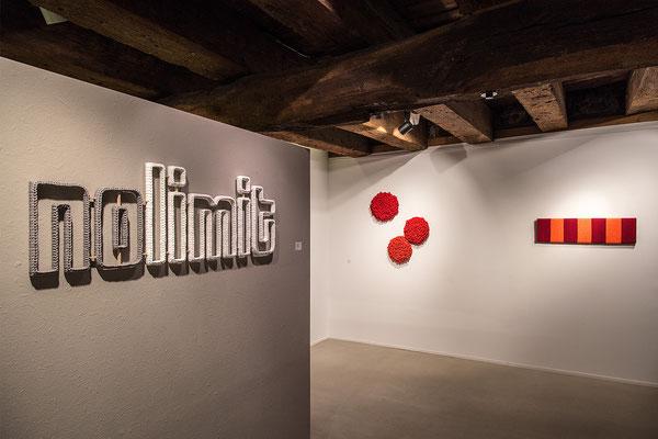 Barbara Reck-Irmler · nolimit + Drei rote Flowers + BOARD Nr. 10