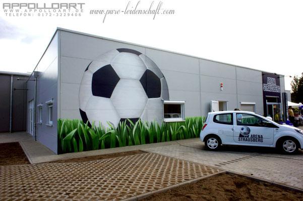 Auftragsmalerei nach Kundenwunsch und Vorlage kreative Fassadengestaltung Wandmalerei