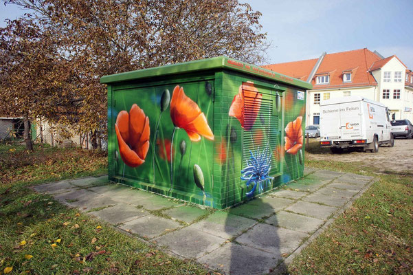 Fassadenkunst Fassadengestaltung-Strausberg