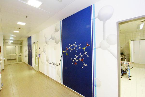 Raumgestaltung in 3d -Wandmalerei Bernau Chemielabor