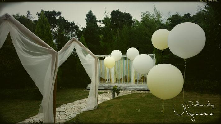 つくば市バルーンショップユリシス ガーデン バルーン 大きい風船 バルーンアート ウェディングフォト バルーンアート