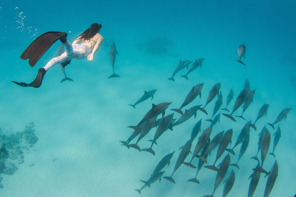 Yes, that's me, just casually swimming with a pod of dolphins