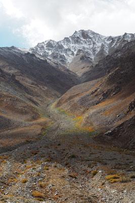 Die ersten Schneegipfel und verschieden farbiges Bodengewächs