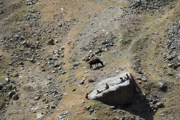 Steine eigenen sich Prima als Rutsche und die Kuh... naja die geht halt weiter;)