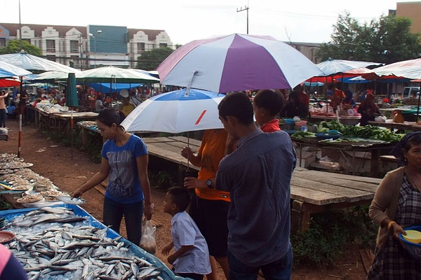 Freiluft-Markt bei Regen. Der Fisch wird nass!